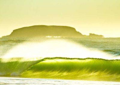 8-Week Surf Programs